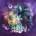 Audio Molly 11 mixtape cover art