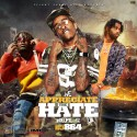 We Appreciate The Hate 42 mixtape cover art
