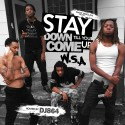 W.S.A. - Stay Down Till You Come Up mixtape cover art