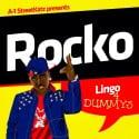 Rocko - Lingo 4 Dummys mixtape cover art