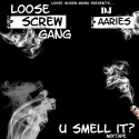 Loose Screw Gang - U Smell It? mixtape cover art