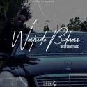 WestCoastAcePro - Westside Bidness mixtape cover art
