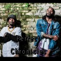 Rozay Mo & J.Skyy - The Perfect Chronicles mixtape cover art