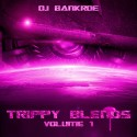 Trippy Blends mixtape cover art