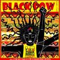 BRZ010 - Black Pow Remixes mixtape cover art