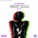 Chophall (Chopped Not Slopped Reggae)  mixtape cover art