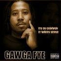 Gawga Fye - It's So Common It Makes Sense mixtape cover art
