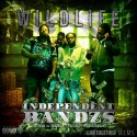 Wildlife - Independent Bandzs mixtape cover art