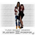 Young Skoot Dinero - Playboy Pimpin mixtape cover art