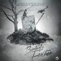 Mush Millions & Bodi Deeder - Birds Of A Feather mixtape cover art