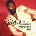 Teddy Pendergrass Tribute mixtape cover art