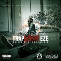 Divine Dollamob - The TrapARTeze mixtape cover art