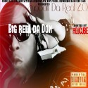 Big Rell Da Don - Support Da Real 2.0 mixtape cover art