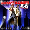 Cam'ron & Vado - Boss Of All Bosses 2.8 mixtape cover art