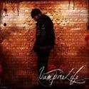 Jim Jones - Vampire Life (We Own The Night) mixtape cover art