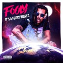 Fooly - It's A Fooly World mixtape cover art