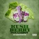 Quadwoofer - KushBerry Doughboy mixtape cover art
