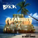 Brick - The Pleasures Of Paradise mixtape cover art