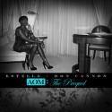 Estelle - AOM The Prequel mixtape cover art