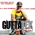 Gutta Tek - Next To Blow mixtape cover art