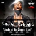 Bedo Turkoglu - Awake Of Da Sleepin Giant mixtape cover art