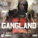 Chevy Woods - Gang Land 2 mixtape cover art