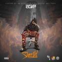 Fast Life Curt - Sheesh mixtape cover art