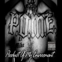 P.O.M.E - Product Of My Environment mixtape cover art
