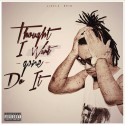Flyboy Jizzle - Thought I Won't Gone Do It mixtape cover art