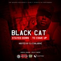 BlackCat - Stayed Down To Come Up mixtape cover art