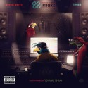 Doe Boy x TM88 - 88 Birdz mixtape cover art