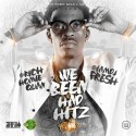 We Been Had Hitz (Hosted By Rich Homie Quan) mixtape cover art