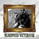 $V - $easoned Veteran$ mixtape cover art
