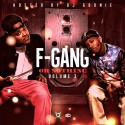 The Finatticz - F Gang Or Nothing 3 mixtape cover art