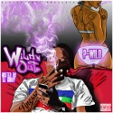 Project Wild - Wild'n Out mixtape cover art