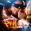 Lil Wayne & T-Pain - You Can't Feel My Pain mixtape cover art