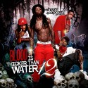 Blood Is Thicker Than Water 12 mixtape cover art