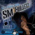 SM Bullett - Locked On Target mixtape cover art