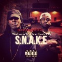 BlockHeadz - S.N.A.K.E mixtape cover art