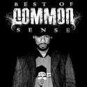Best Of Common Sense mixtape cover art
