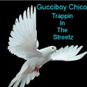 GucciboyChico - Trappin In The Streetz mixtape cover art