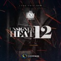 Unsigned Heat 12 mixtape cover art