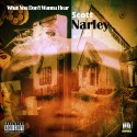 Scott Narley - What You Don't Wanna Hear mixtape cover art
