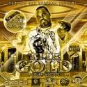 Bigg Rick - The Gold Mixtape mixtape cover art