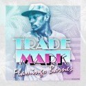Trademark Da Skydiver - Flamingo Barnes mixtape cover art