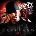 Dipset - Gangland 10 mixtape cover art