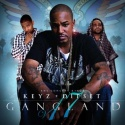 Gangland 17 (Dipset) mixtape cover art