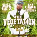 Big Cuz - The Vegetation mixtape cover art