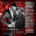 R&B Junkies 13 (Hosted By Verse Simmonds) mixtape cover art