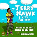 Terry Hawk - I Pity The Fool mixtape cover art